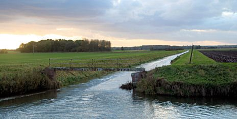 Carrlands - River Ancholme, North Lincolnshire. Photo: M Pearson